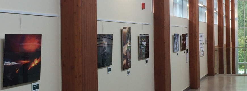 Gallery display at Delbrook Community Recreation Centre