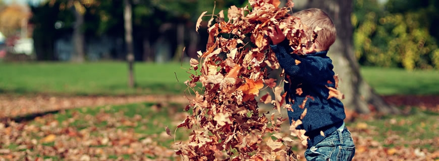 Young child playing in fallen leaves